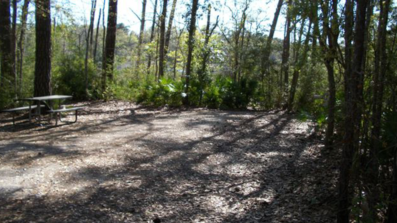 City_of_Gautier_campsite_gallery_Shepard_State_Park_site_14