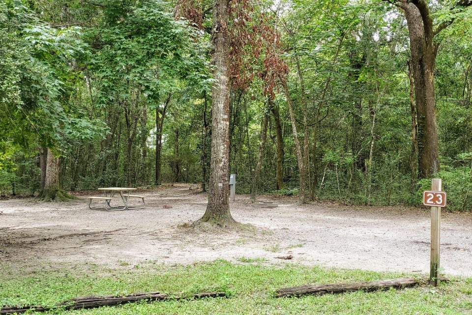 campsite_23_gautier_park