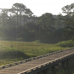 City_of_Gautier_conceptual_design_Shepard_State_Park_Boardwalk_1