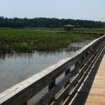 City_of_Gautier_conceptual_design_Shepard_State_Park_Boardwalk_2